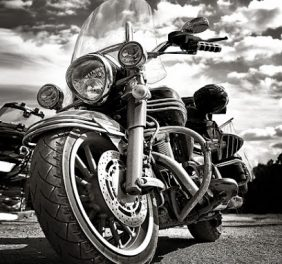 Law Tigers Motorcycl...
